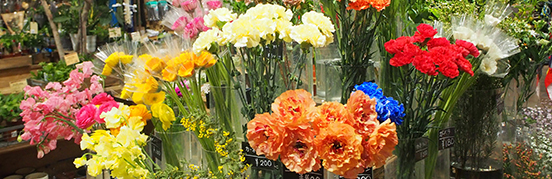 Flower&Plantサブイメージ